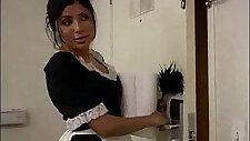 Sativa House Maid Got it Wild